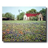 Country Windmill Barn Flowers Landscape Home Decor Wall Picture 16x20 Art Print