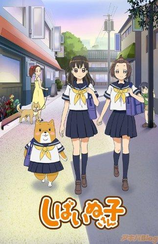 しばいぬ子さん 【DVD】