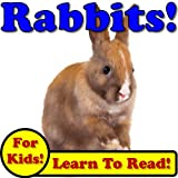 Rabbits! Learn About Rabbits While Learning To Read - Rabbit Photos And Facts Make It Easy! (Over 45+ Photos of Rabbits)