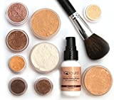 Large Pure Mineral Makeup Starter Set with Brush, FAIR Shade Natural Makeup by IQ Natural