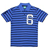 Plums Blue Stripes Polo T-shirt For Boys - B0151EOS7A