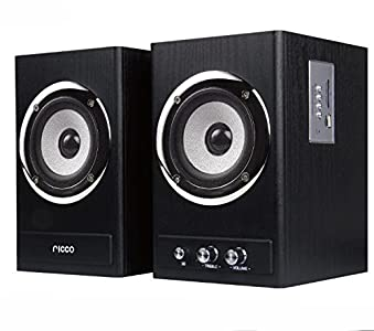 Great buy for  Ricco 24 W 2 Channel RMS Wooden Chrome Speaker Home Hi-Fi System