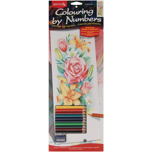 Reeves 17-1/4-Inch by 6-1/4-Inch Tall Pencil by Number Kit, Flowers