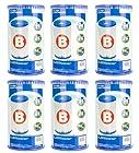 Intex Type B Pool Easy Set Filter Cartridges (Pack of 6) - For Intex 2000