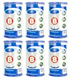 Intex Type B Pool Easy Set Filter Cartridges (Pack of 6) - For Intex 2000, 2500, 3000 3500 & 4000 GPH Filter Pumps