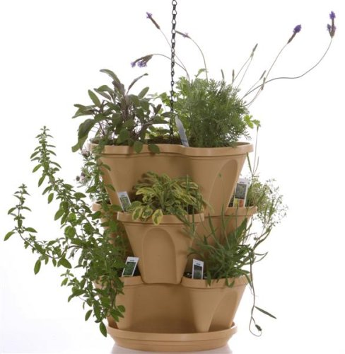 Creating a Container Herb Garden in Home Grown at Farmers Market