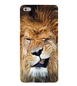 A SCOULED FACE LION FACE IMAGE 3D Hard Polycarbonate Designer Back Case Cover for Micromax Canvas Sliver 5 Q450::Micromax Canvas Silver 5