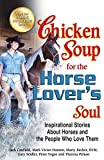 img - for Chicken Soup for the Horse Lover's Soul: Inspirational Stories About Horses and the People Who Love Them book / textbook / text book