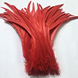 Shekyeon 12-14inch Rooster Tail Feather Use for Hats Costume Decoration Pack of 50(red)
