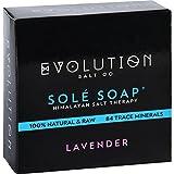 Evolution Salt Soap Lavender
