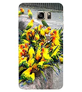 ColourCraft Beautiful Birds Design Back Case Cover for SAMSUNG GALAXY NOTE 7 DUOS