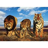 (24x36) Wild Cats (Lion, Jaguar, Tiger) Art Poster Print