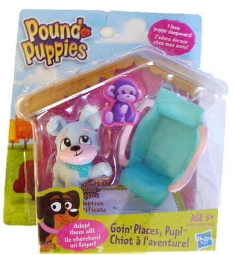 pound-puppies-exclusive-mini-2-pack-goin-places-pup-by-hasbro
