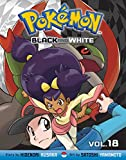 Pokémon Black and White, Vol. 18 (Pokemon)
