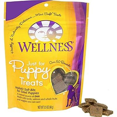 Wellness Puppy Bites Grain Free Natural Dog Treats
