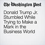 Donald Trump Jr. Stumbled While Trying to Make a Mark in the Business World | Shawn Boburg,Robert O'Harrow Jr.