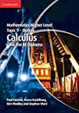 Mathematics Higher Level for the IB Diploma Option Topic 9 Calculus