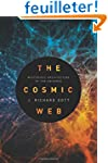 The Cosmic Web - Mysterious Architect...