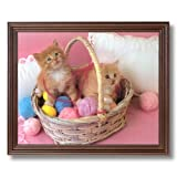 Kitty Cat Kittens Basket Kids Room Animal Picture Cherry Framed Art Print