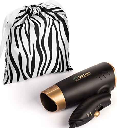 Dual Voltage Folding Travel Hair Dryer (110 Volt Hair Dryer compare prices)