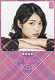 クリアファイル付 (卓上)AKB48 前田亜美 カレンダー 2015年