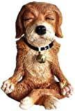 Top Collection Miniature Fairy Garden and Terrarium Dog in Meditation Statue