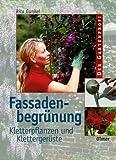 Image de Fassadenbegrünung: Kletterpflanzen und Klettergerüste