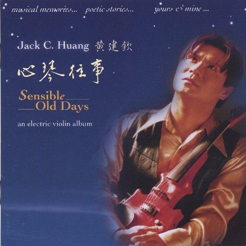 Sensible Old Days An Electric Violin Album