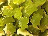 Haribo terrific turtles bubblegum flavoured shapes from 100gram