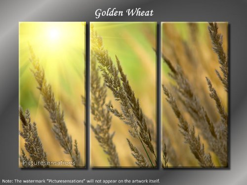 Framed Huge 3 Panel Art Sunshine Grass Golden Wheat Giclee Canvas Print