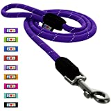 PawtitasTM Reflective 6 ft. Rope Leash Purple M/L
