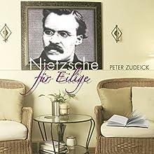 Nietzsche für Eilige Hörbuch von Peter Zudeick Gesprochen von: Jesko Döring