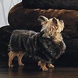Frontgate Faux Fur Pet Jacket, Channeled Mink, Small