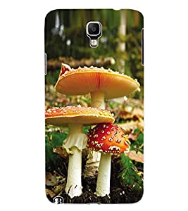ColourCraft Beautiful Mushrooms Design Back Case Cover for SAMSUNG GALAXY NOTE 3 NEO DUOS N7502
