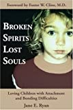 img - for Broken Spirits ~ Lost Souls: Loving Children with Attachment and Bonding Difficulties book / textbook / text book