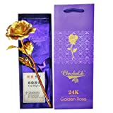 #6: Chocholik 24K Gold Rose 10 INCHES With Gift Box - Best Gift For Loves Ones, Valentine's Day, Mother's Day, Anniversary, Birthday