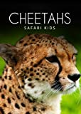 Cheetahs (Safari Kids)