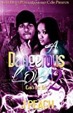 img - for A Dangerous Love 2: Can't Let Go (Volume 2) book / textbook / text book