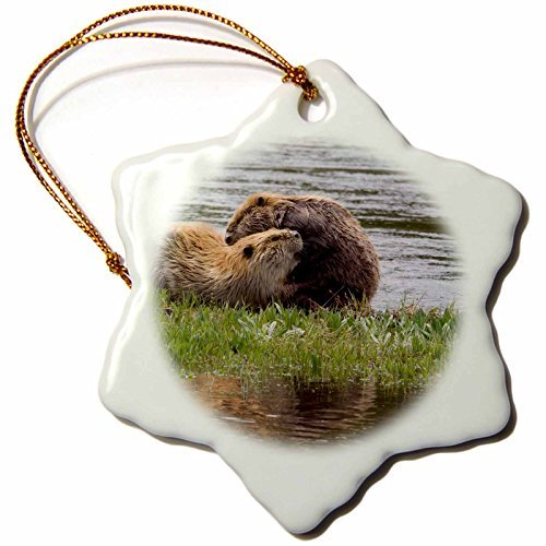 danita-delimont-beavers-beaver-pair-grooming-one-another-3-inch-snowflake-porcelain-ornament-228426-