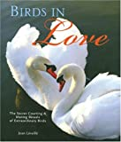 Birds in Love: The Secret Courting &amp; Mating Rituals of Extraordinary Birds