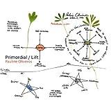Primordial/Lift