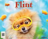 Flint the Pomeranian 2015 Wall Calendar