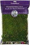 Super Moss Sheet Moss Preserved Fresh Green 1200cuin
