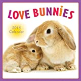 Love Bunnies 2015 Wall Calendar