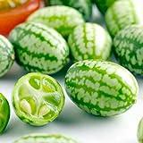 #2: Suttons Seeds: Cucamelon Seeds