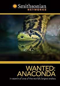 Wanted: Anaconda