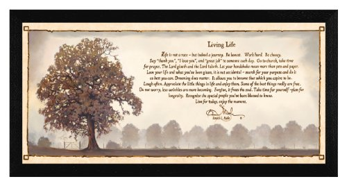 The Craft Room COW215A-276 Living Life, Hardwood Framed and Textured Wall Art, 36x12 Inches