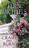 img - for Crash and Burn (Sisterhood) book / textbook / text book