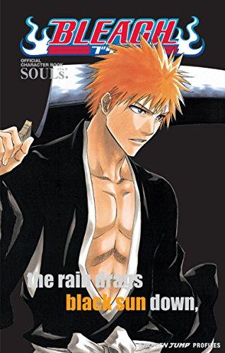 Bleach SOULs. Official Character Book [Kubo, Tite] (Tapa Blanda)