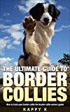 The Ultimate Guide To Border Collies: How to Train Your Border Collie the Border Collie Owners Guide (Dog Training Guide, Border Collies)